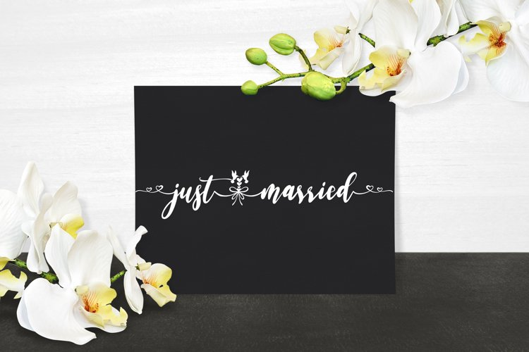Just Married BUNDLE Cut Files - SVG & PNG example image 1
