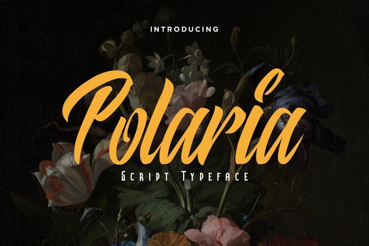 Polaria Script Typeface example image 1