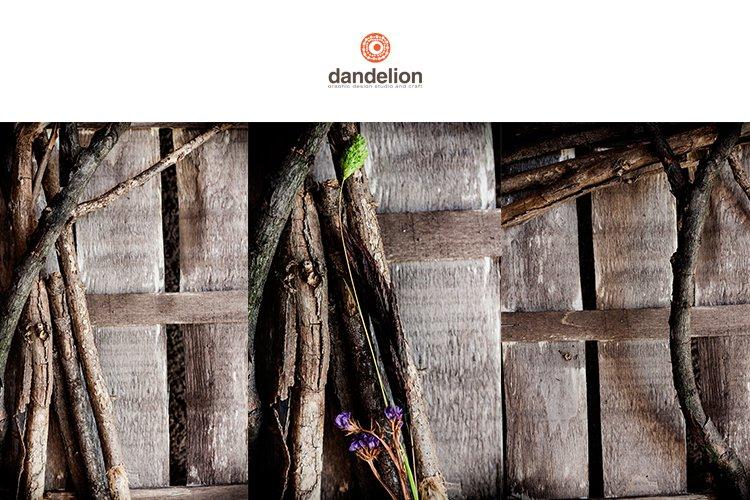 dry sticks on wood example image 1
