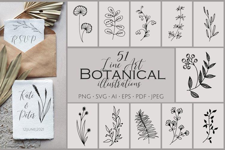 51 Line Art Botanical Illustrations SVG, PNG. Hand drawn