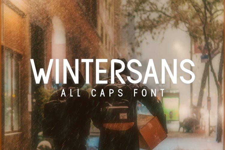 Wintersans example image 1