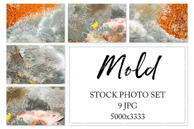 Mold. Stock photo set. example image 1