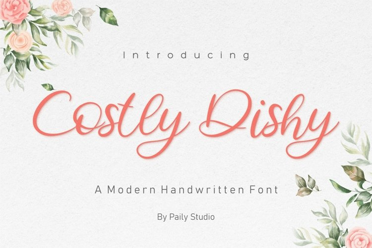 Costly Dishy Modern Handwritten Font example image 1