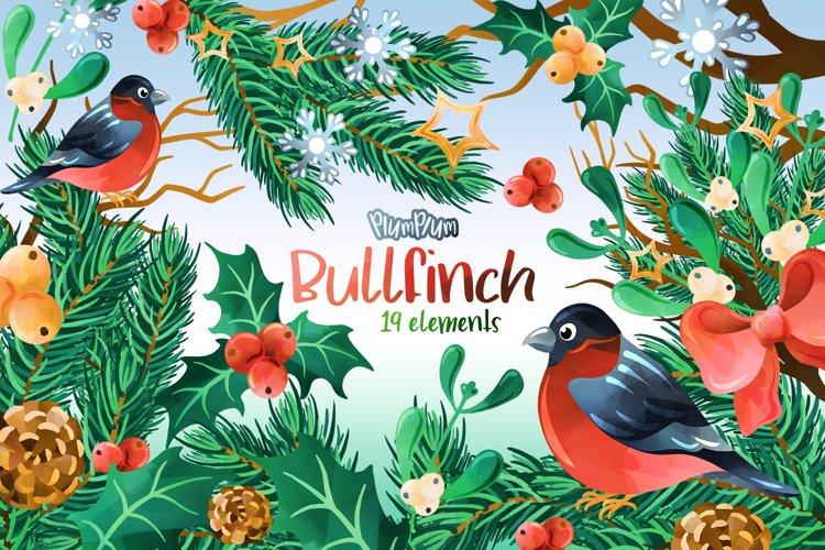 Bullfinch Watercolor Cliparts example image 1