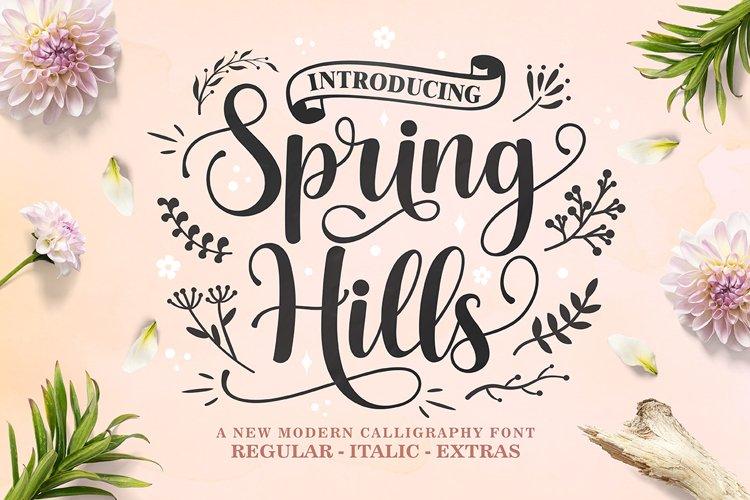 Spring Hills Script example image 1