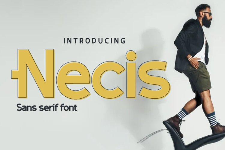 Necis example image 1