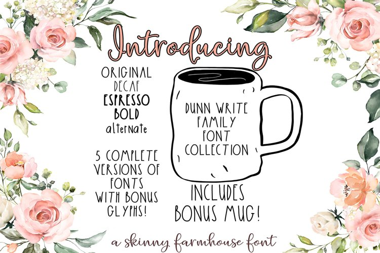 The Dunn Write Farmhouse Skinny Font Collection example image 1
