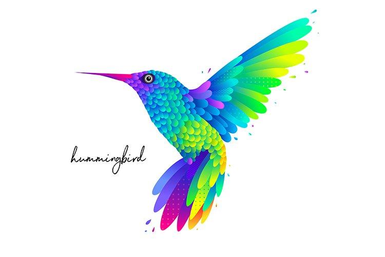 Colorful humming bird illustration example image 1