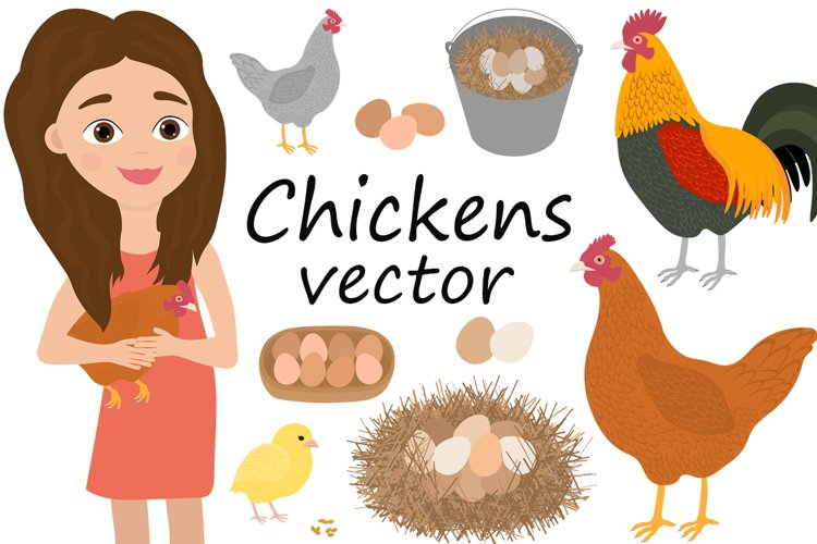 Set Girl and chicken rooster chicks eggs vector illustration example image 1