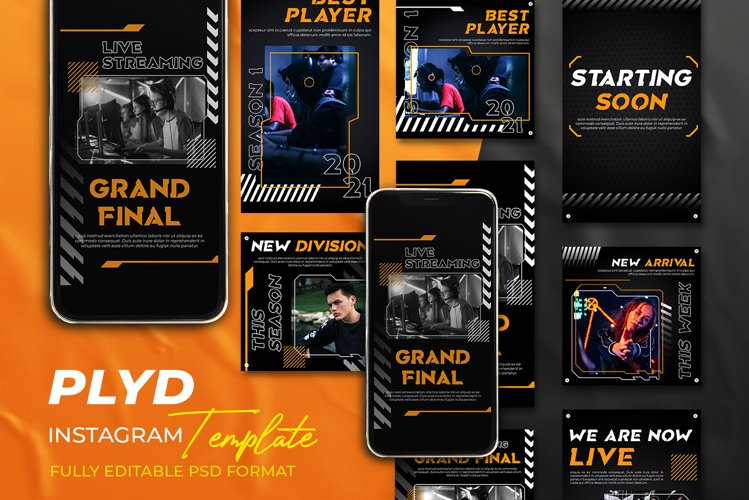 PLYD - Instagram Stories & Post Template