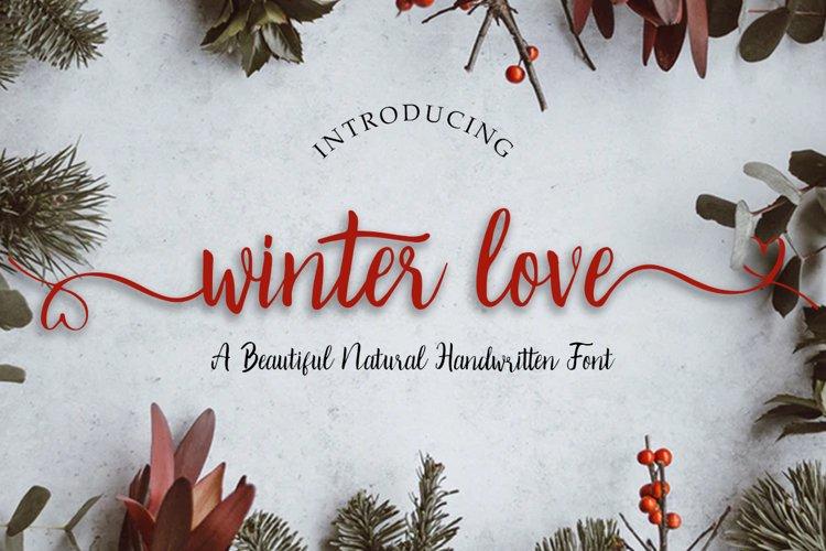 Winter Love | Handwritten Script Font example image 1