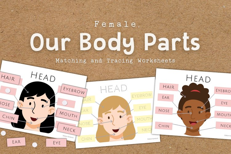 Our Body Parts Educational Matching and Tracing Worksheets example image 1