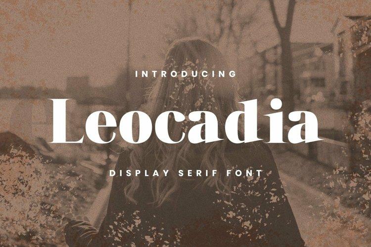 Web Font Leocadia Font example image 1