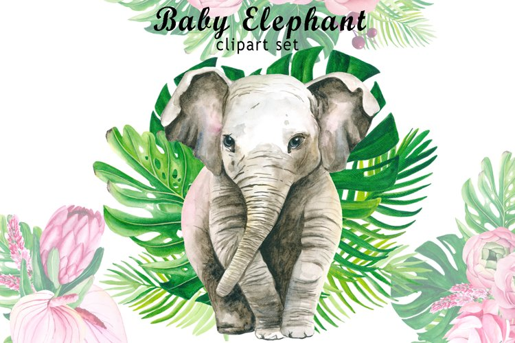Watercolor baby elephant clipart. Tropical flowers Clipart