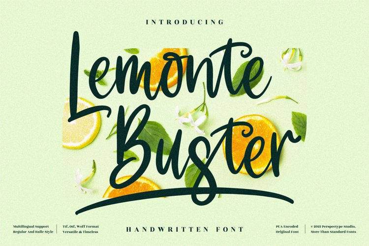 Lemonte Buster - Cute Handwritten Font example image 1