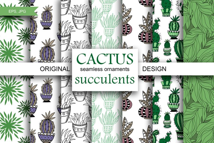 CACTUS and succulents design example image 1