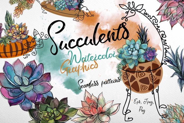 Succulents. Watercolor. Graphics. example image 1