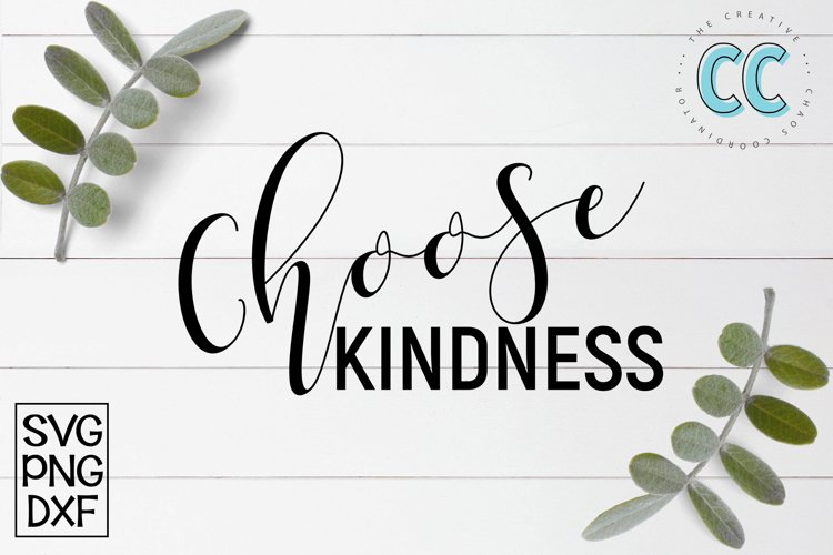 Choose Kindness example image 1