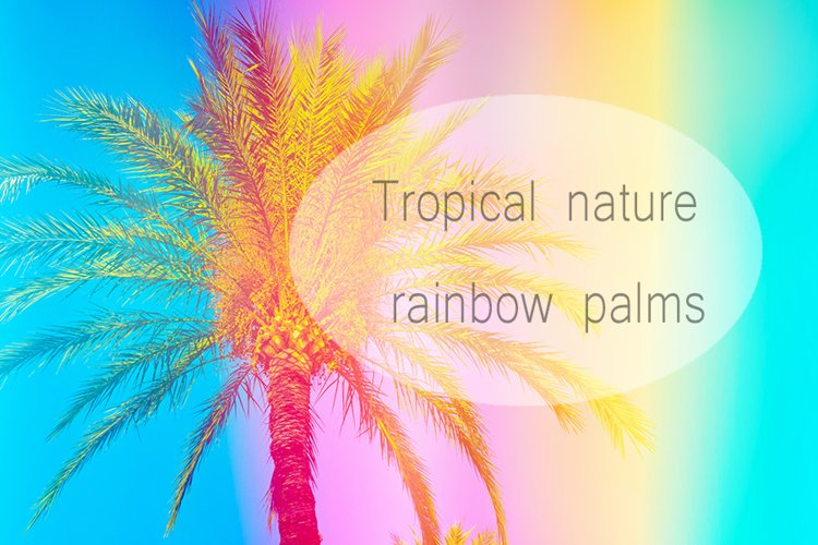 Palm tree in rainbow colors example image 1