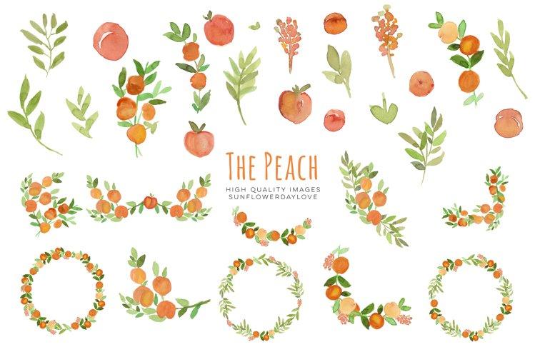 Peaches Greenery Watercolour, Peaches Clipart