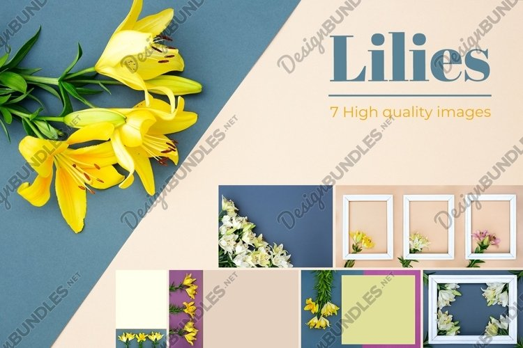 Yellow and white lilies on multicolored background