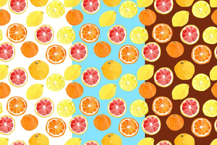 Watercolor vector citrus fruits example 4