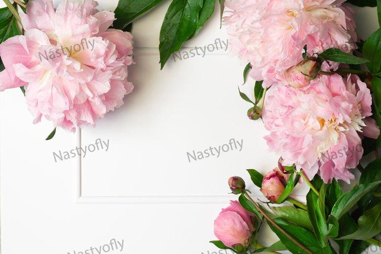 Peony Flat lay. Beautiful peony flower for any holiday.