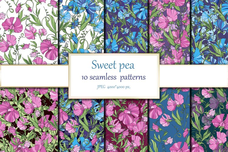 Sweet pea, 10 floral seamless patterns example image 1