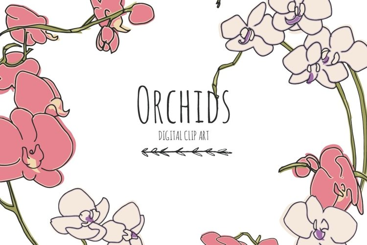 Orchids - Digital Clip Art example image 1