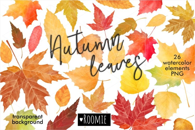 Watercolor autumn leaves clipart, Fall leaf Hello autumn png