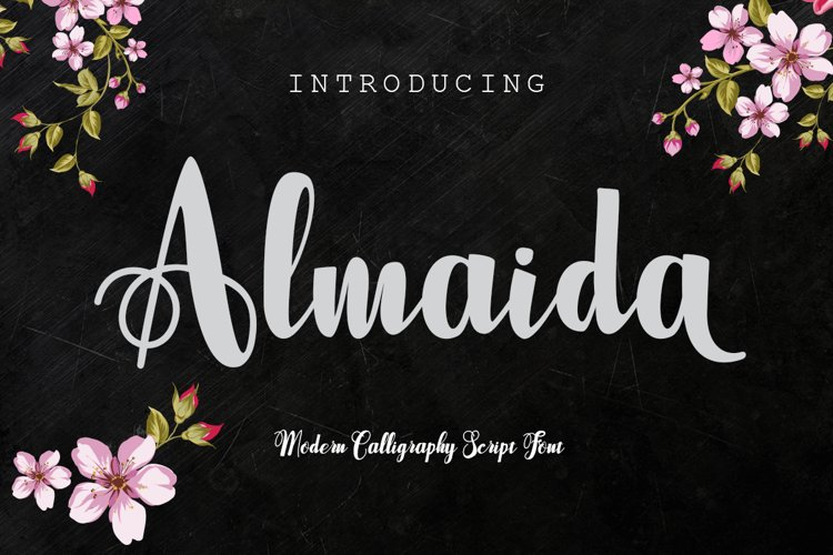 Almaida example image 1