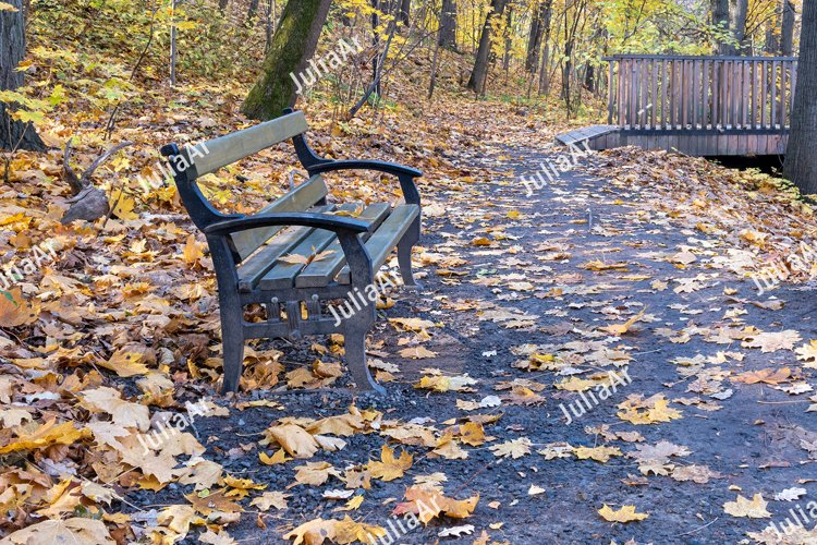 Bench and walk path in autumn park example image 1