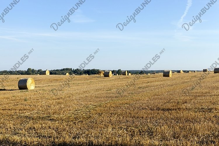 stack of straw example image 1