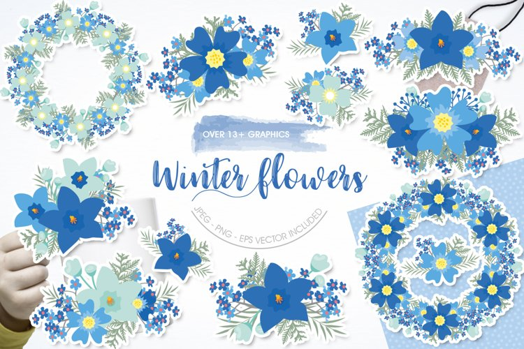 Christmas winter florals Graphics and illustrations flowers
