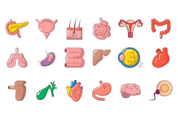 Human internal organ icon set, cartoon style example image 1