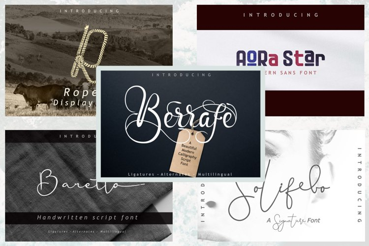5 in 1 - font bundle vol 04 example image 1