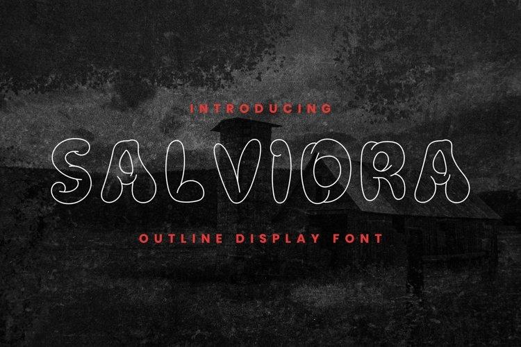 Web Font SALVIDRA Font example image 1