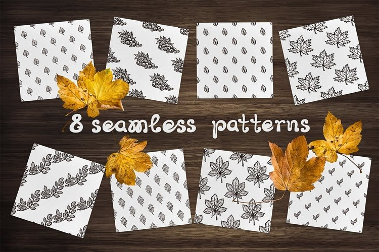 8 patterns & textures with leaves| SVG EPS AI JPEG PNG PSD example image 1