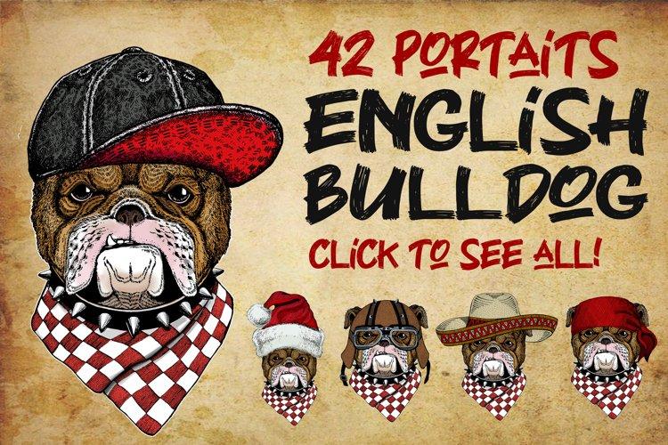 Bulldog, dog. Animal logo template, t-shirt print