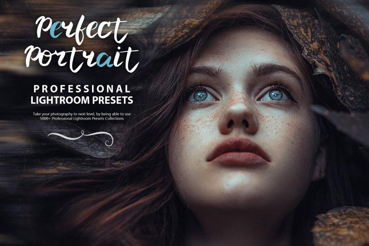 95 Perfect Portrait Lightroom Presets example image 1