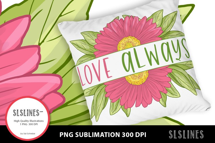 Pink Daisy - Love Always PNG sublimation example image 1