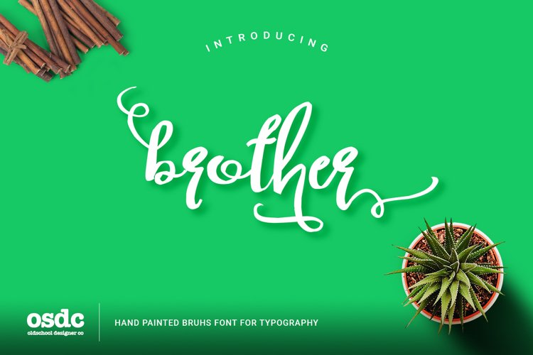 Brother Typography Script example image 1