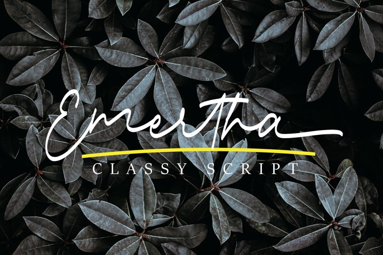 Emertha Classy Script example image 1