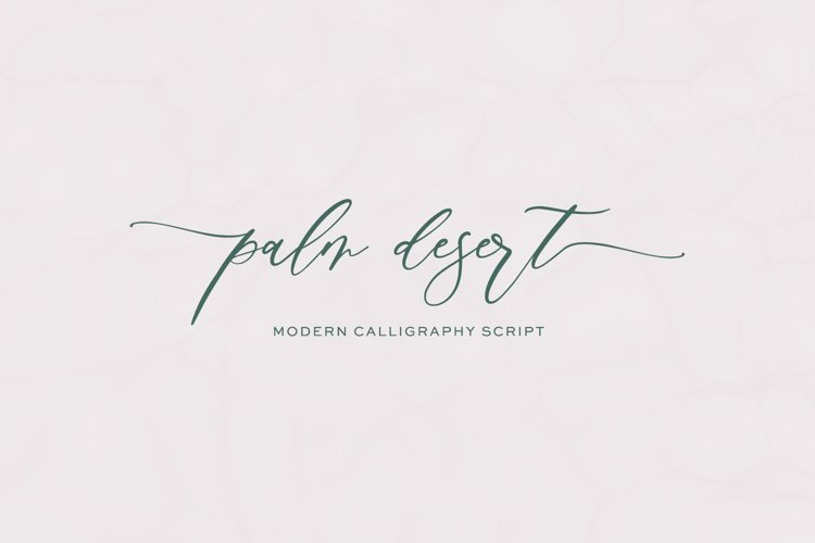 Palm Desert Modern Calligraphy Font example image 1