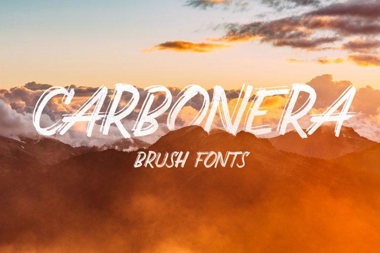 Carbonera Brush Fonts example image 1