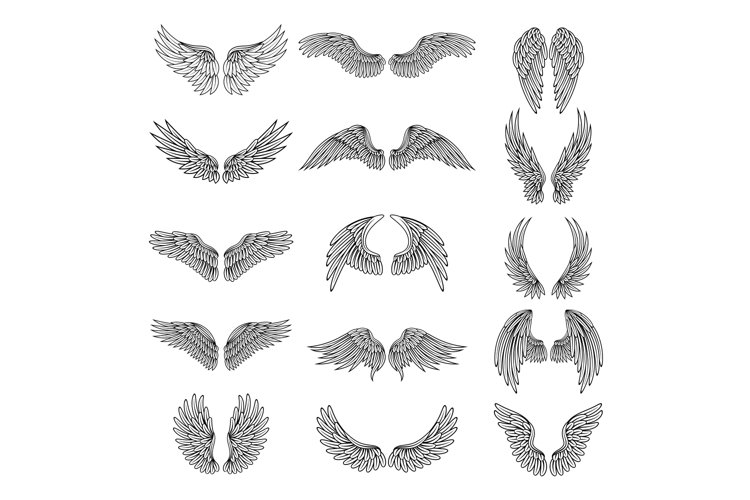 Monochrome illustrations set of different stylized wings for example image 1