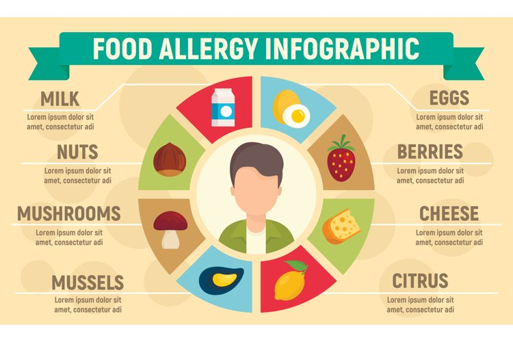 Food allergy infographic, flat style example image 1