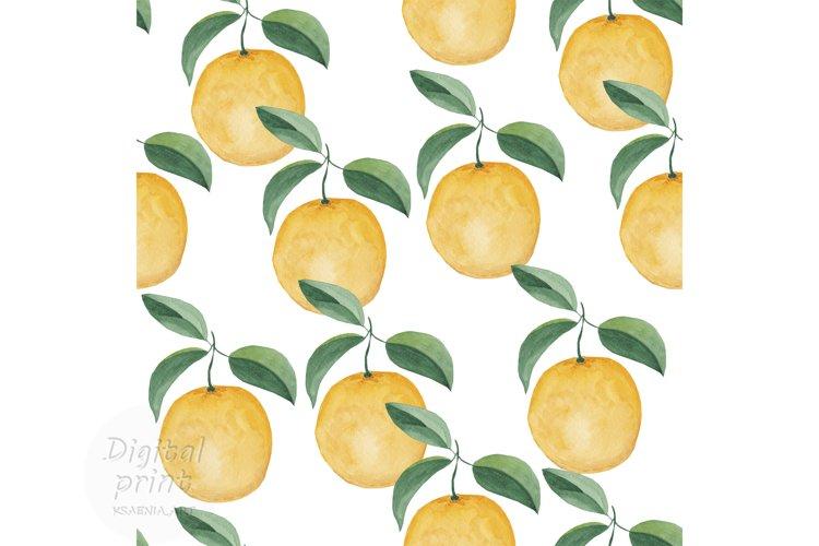 Watercolor citrus clipart Orange digital paper example image 1