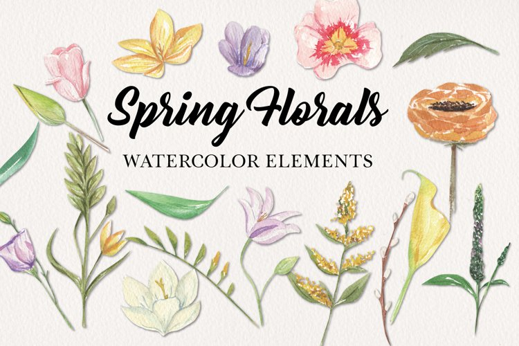 18 Spring Floral Blooms Clipart Watercolor Elements Pastels example image 1
