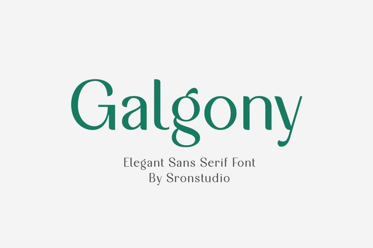 Galgony - Elegant Sans Serif Font example image 1